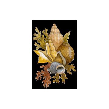 Arthro+ marin mélange en gélules