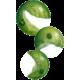 Chlorella algue en comprimés