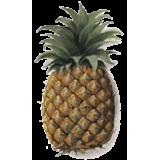 Ananas tige en gélules, minceur et régime