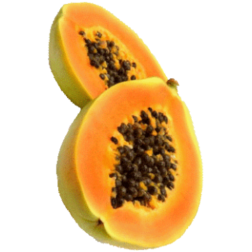 https://www.abcdelanature.com/2581-thickbox/papaye-fermentee-gelules-herboristerie.jpg