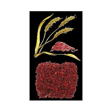Riz Rouge en gélules