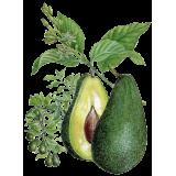 Huile végétale Vierge d'Avocat Bio*