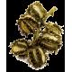 Huile végétale vierge de Ricin Bio*