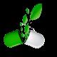 Gélules végétales HPMC