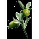 Huile végétale Jojoba Vierge Bio*