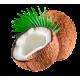 Huile végétale COCO Vierge Bio*