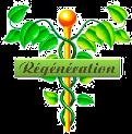 regeneration-3.png