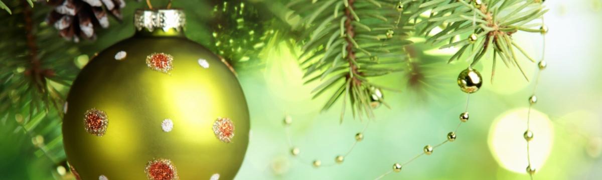 TOUTE L'EQUIPE DE L'ABC DE LA NATURE VOUS SOUHAITE DE JOYEUSES FÊTES ET UNE TRES BELLE ANNEE.